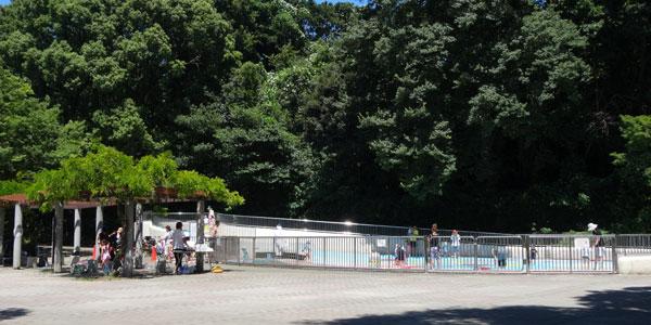 東京都新宿区立戸山公園内・じゃぶじゃぶ池・レビュー 2017年更新