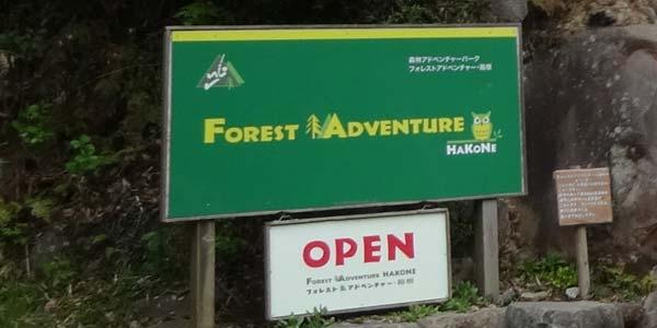 フォレストアドベンチャー箱根は大人も楽しめるアスレチック。箱根の新名所