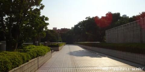 20150711_新宿区立新宿中央公園_map27