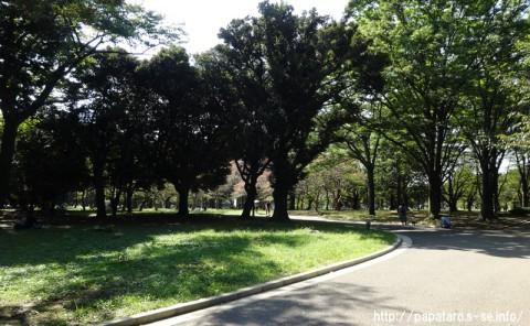 20150922_東京都立代々木公園_map_06