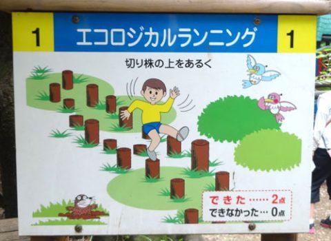 20160613_フィールドアスレチック横浜つくし野_rev09