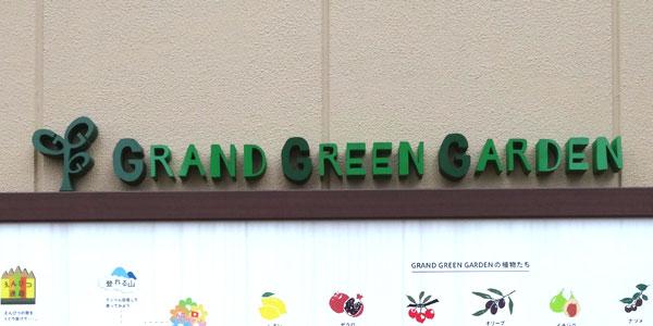グランツリー武蔵小杉の屋上庭園は子供の遊び場のぐらんぐりんガーデン