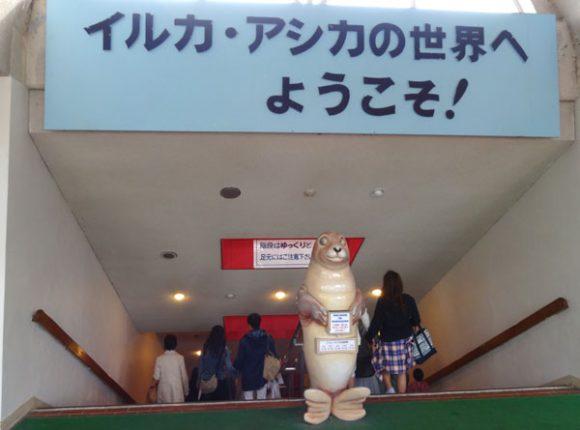 04_京急油壷マリンパークに行くのは京急のみさきまぐろきっぷがお勧め