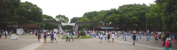 昭和記念公園のレインボープールの入場ゲート
