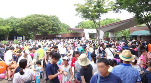 昭和記念公園のレインボープールの入場ゲート前の大行列