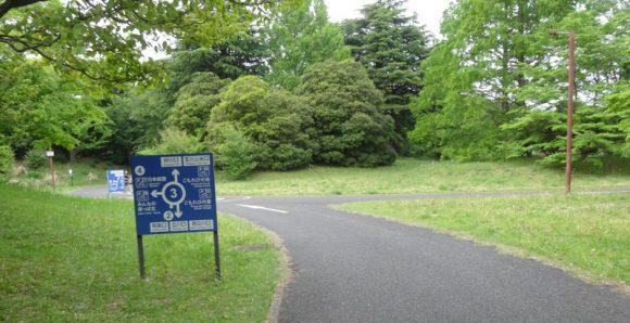 13_国営昭和記念公園のレンタサイクルを借りるには開園時間に並ぶ必要がある?