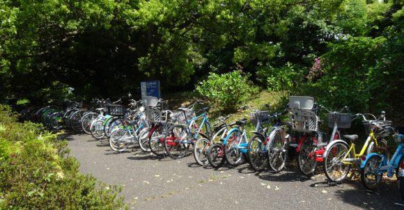 14_国営昭和記念公園のレンタサイクルを借りるには開園時間に並ぶ必要がある?