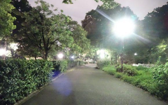 ペルセウス流星群を東京都内の新宿区戸山公園の箱根山で天体観測できるか、実際に行って見た