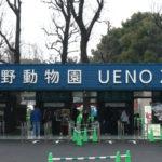 上野動物園のシャンシャンの待ち時間やへんないきもの、ざんねんないきもの