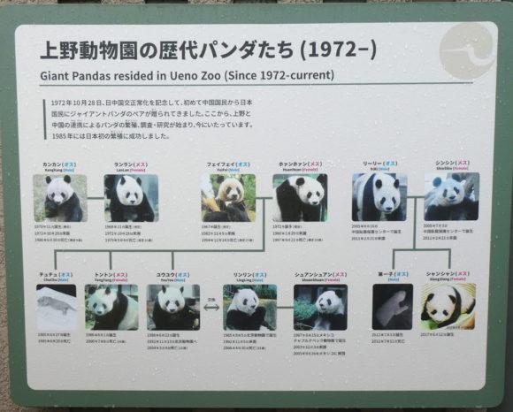 上野動物園・上野動物園で飼育されてきた歴代のパンダの説明