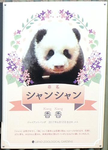 上野動物園・パンダのシャンシャンが産まれたときの案内看板