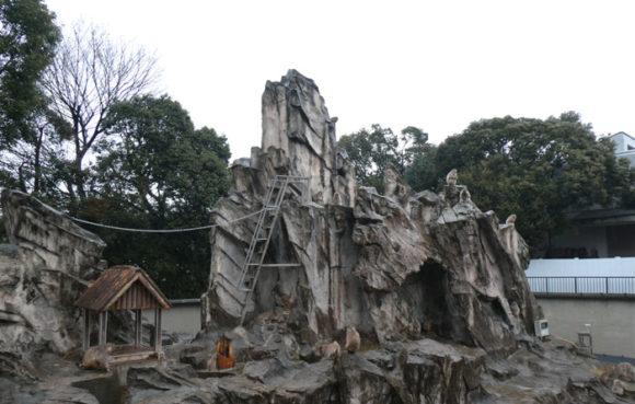 上野動物園のニホンザル。寒い日だったので、あまり動かず...