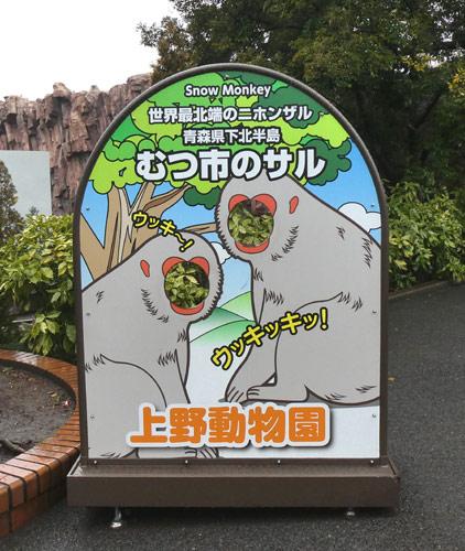 上野動物園のニホンザルはむつ市のサルであるそうだ