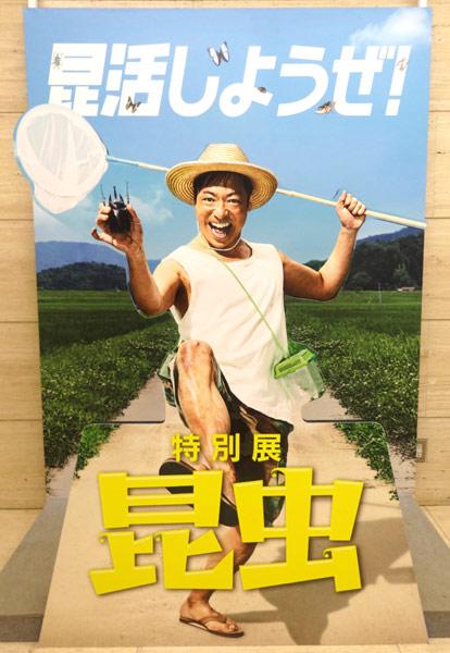 上野にある国立科学博物館で行われた特別展昆虫・昆活しようぜ