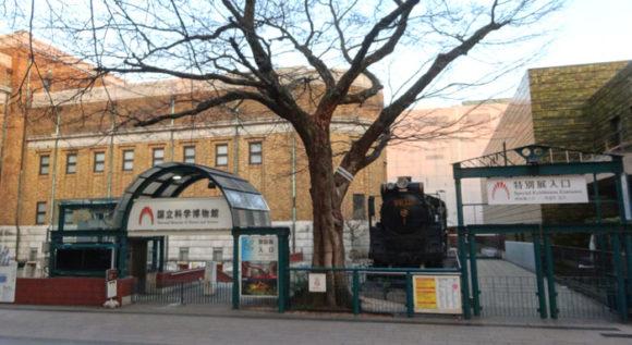 上野にある国立科学博物館は特別展と常設展では最初から入り口が分かれている