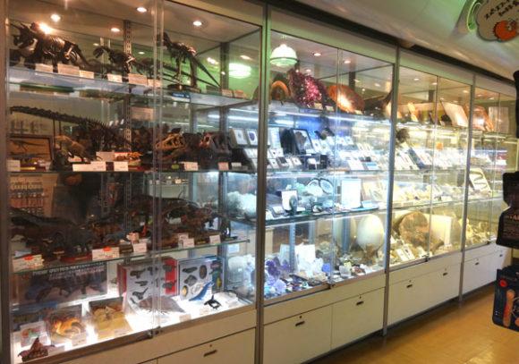 上野にある国立科学博物館のミュージアムショップ・鉱物標本や恐竜、古代生物の化石などが販売されている