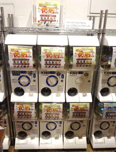 上野にある国立科学博物館のミュージアムショップ・気軽なお土産としてガチャガチャも豊富に揃っている