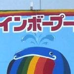 レインボープールin昭和記念公園・2019年版・駐車場事情と前売り割引券の効果