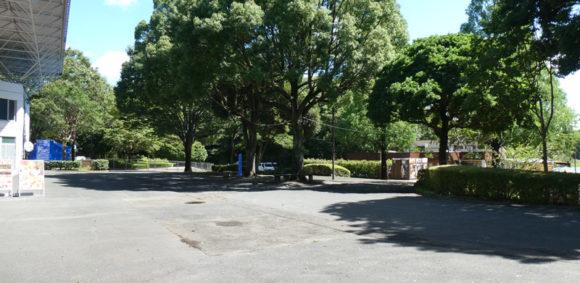 昭和記念公園のレインボープールの入り口前にあった売店は今年はありませんでした