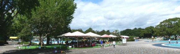 昭和記念公園のレインボープール・クローバープールの近くの休憩スペース