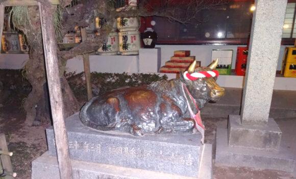 太宰府天満宮の御神牛
